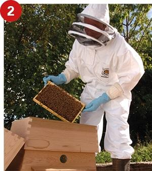 All-in-one Beekeeper Suit With Veil and Gloves