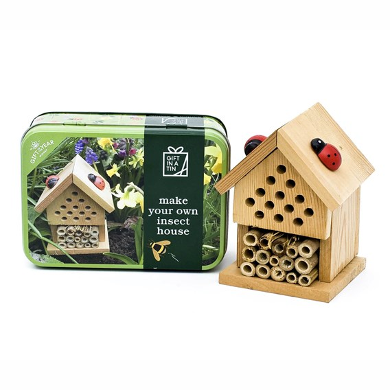 MYO Insect House