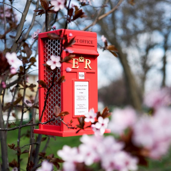 Postbox Peanut Feeder