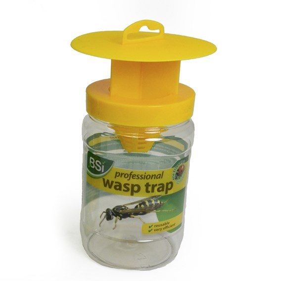 Professional Wasp Trap