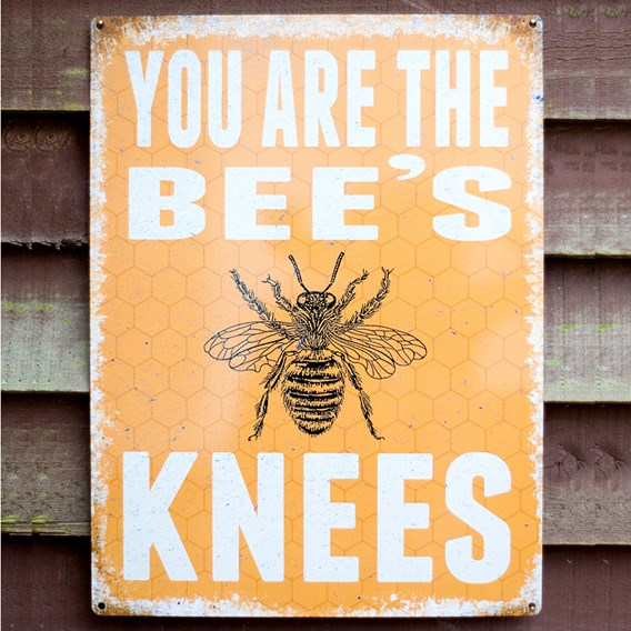 Bee's Knees Sign (NBS)