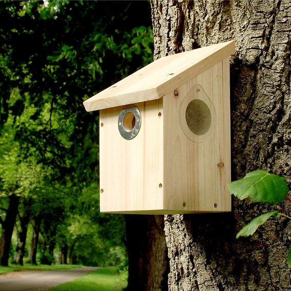 Camera Ready Nestbox (NBS)