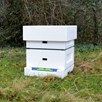 Polystyrene National Hive with Frames And Foundation