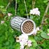 Bee Nester Tin